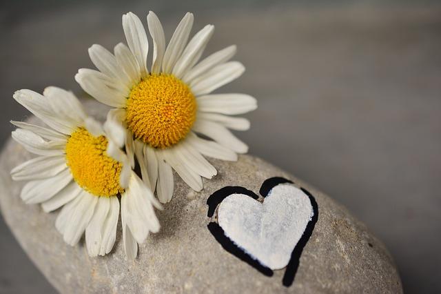 復縁,出会い直し,復活愛,彼の気持ちを取り戻す,冷めた恋